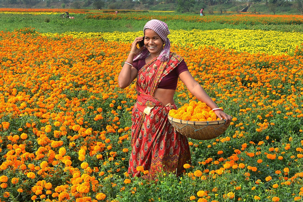 A woman harvesting in a field of flowers talking on a cell phone